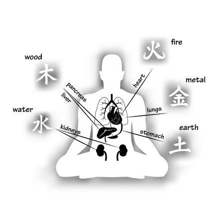 Ilustración de Five elements and human organs. Silhouette of sitting man - Imagen libre de derechos