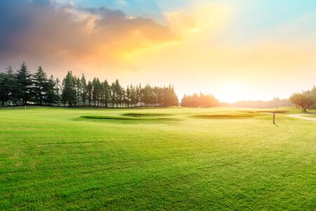 Photo pour Green grass and forest with beautiful clouds at sunset - image libre de droit