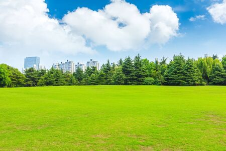 Foto de Green grass and city skyline with buildings in Shanghai,China. - Imagen libre de derechos
