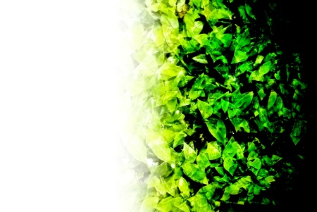 abstractly formed by group of green leaves