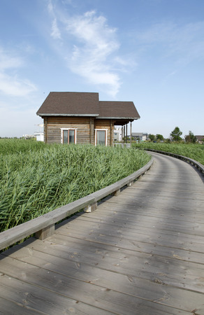 Wetland park of wooden houses, very beautiful
