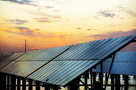Photo pour Solar photovoltaic panels in the evening - image libre de droit