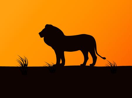 Illustration pour Vector silhouette lion on the background of sunset - image libre de droit