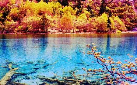 Foto de Jiuzhaigou scenery - Imagen libre de derechos