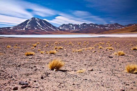altiplano lagoon Miscanti close to cerro Miscanti, desert Atacama, Chile