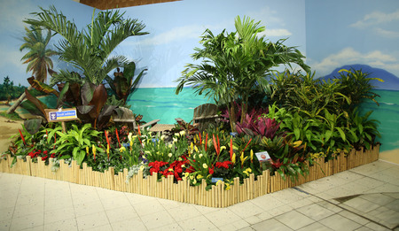 NEW YORK - MARCH 22, 2016: Royal Caribbean Tropical oasis garden flower decoration during famous Macy s Annual Flower Show in the Macy s Herald Square in midtown Manhattan