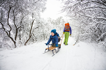 A woman is carrying a child on a sled. Mom walks with her son over the snow-covered forest. Cheerful winter vacation. Winter fun. Baby on the sleigh.の写真素材