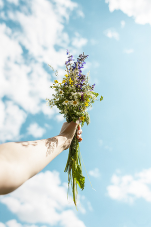 Bouquet of wildflowers against the blue sky. Beautiful sky with clouds. A woman's hand holds a bouquet.