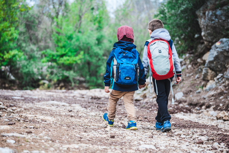 Photo for Two boys with backpacks are walking along a forest path. The brothers walk together in the park. Two friends go holding hands. Little travelers. Children spend time in nature. - Royalty Free Image