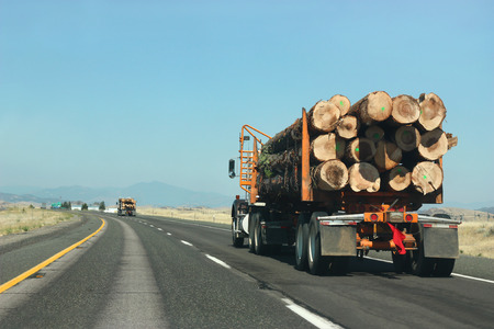Foto de Large truck transporting wood on the road - Imagen libre de derechos