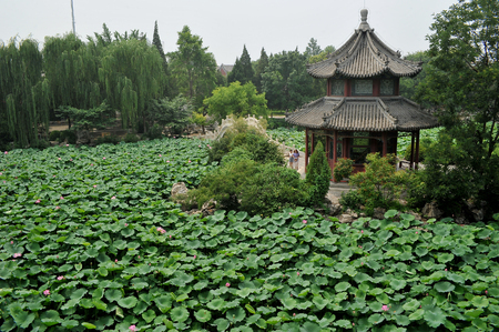 Lianchi college and lotus pond at Hebei, China.