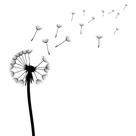 vector dandelion on the wind