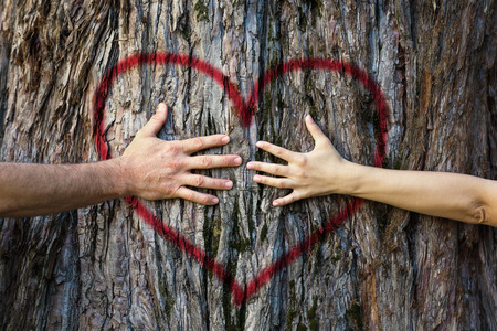 Photo pour Hands of couple in love hugging a tree with painted red heart - image libre de droit