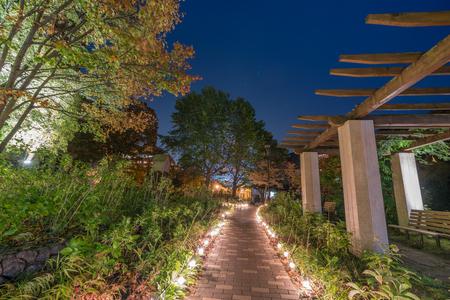 Photo pour Night time illumination in Japanese garden, Jozankei onsen - image libre de droit