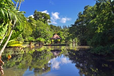 Lake in tropical park of Mau