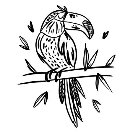 Illustration pour Toucan. Birds. Black white hand drawn doodle. Ethnic patterned vector illustration. - image libre de droit