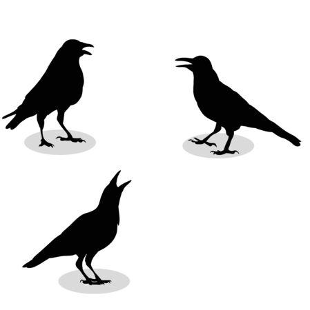 Illustration pour vector, silhouette of a raven, - image libre de droit