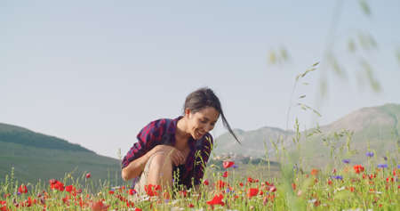 Photo for Smiling woman smelling and picking flowers from field.Front view,medium shot,slow motion.Crouched smiling woman among red flowers outdoor. Sunny weather - Royalty Free Image