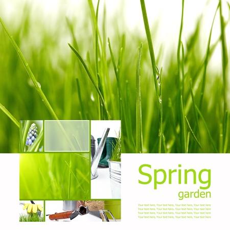 Spring board concept