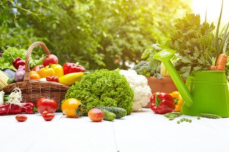Foto für Fresh organic vegetables and fruits on wood table in the garden - Lizenzfreies Bild