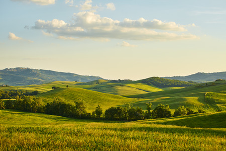 Photo pour Tuscany hills - image libre de droit