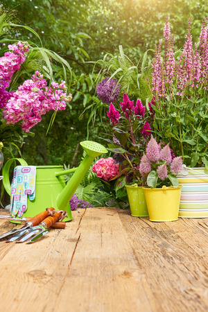 Photo for Gardening tools on the terrace in the garden - Royalty Free Image