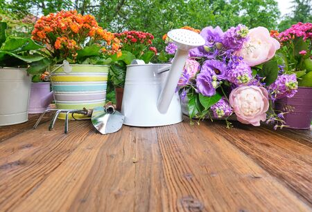 Photo for watering can and flower seedlings on a wooden table - Royalty Free Image