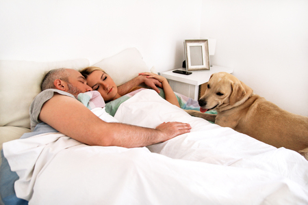 Handsome couple in bed sleeps together in association with their dog. A yellow labrador retriever enjoys and resting in the bedroom with their owners. People with pets at home, house. Lovely cute dog.