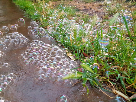 Big colorful soap bubbles in nature. Many bubbles soap on floor of garden outdoor, beautiful natural environment. Abstract soap bubbles background. Soap bubbles and field behind it green nature.