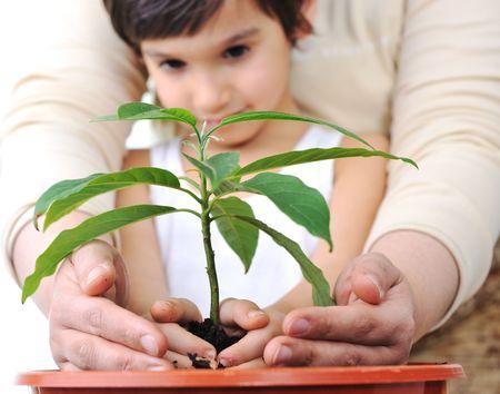 Photo pour Planting a plant - image libre de droit