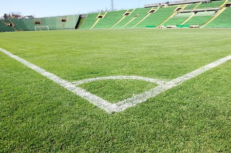 Soccer field with beautiful green grass in stadium