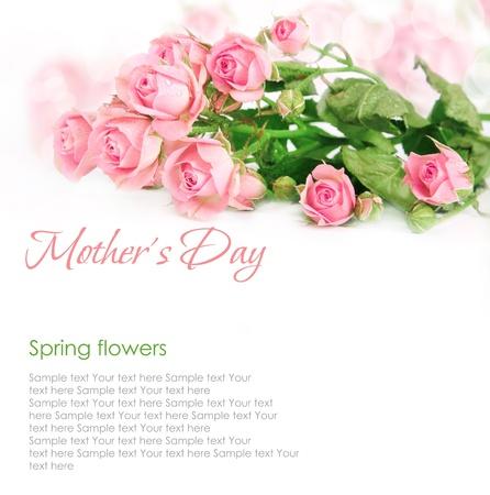 Pink roses postcard design 4(1).jpg