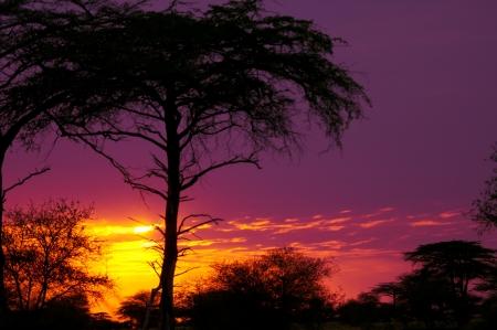 sunset in tanzania - nationa
