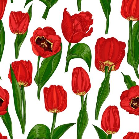 Illustration pour Greeting seamless with Spring flower tulips in red and green colors isolated on white background. Engraving drawing style Realistic botanical nature sketch - image libre de droit