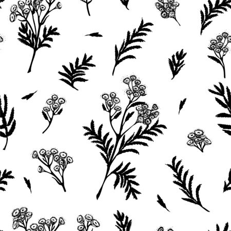 Illustration for Seamless pattern with black hand drawn silhouette of tansy, lives and flowers isolated on white background. Retro vintage graphic design. Botanical sketch drawing, Vector illustration. - Royalty Free Image