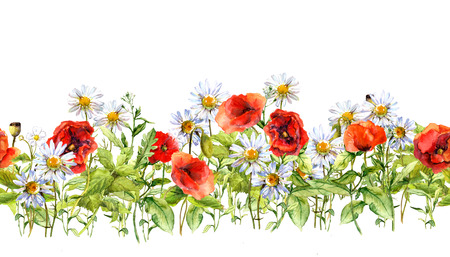 Floral horizontal border for fashion design. Watercolor wild flowers, grass, herbs. Repeated frame