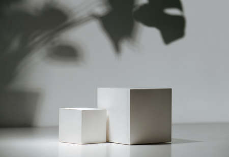 Composition of two white cubes over white wall with a shadow of big leaves