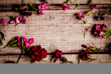 Foto de Red and pink flowers in circle, over wooden table. Top view whit copy space. - Imagen libre de derechos