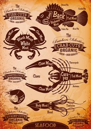Illustration pour set of diagram cut carcasses seafood - image libre de droit