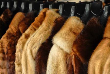 Photo for fur jackets   - Royalty Free Image