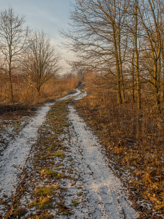 Photo for The narrow road in a nature reserve in winter - Royalty Free Image