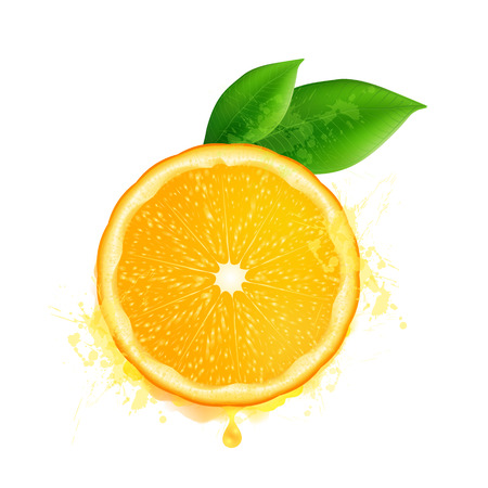 Illustration pour Vector orange slice with leaves and watercolor drops effect isolated on white background - image libre de droit