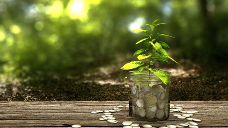 Photo pour Plant growing from money jar. Concept of financial investment. - image libre de droit