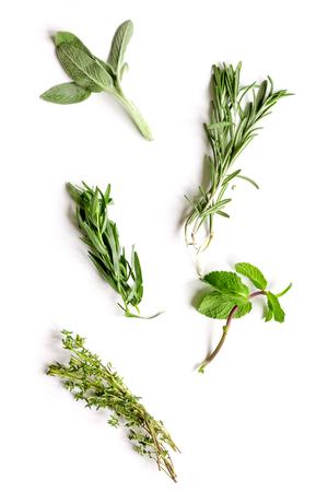 Foto de mint, sage, rosemary, thyme - tufts of herbs white background top view - Imagen libre de derechos