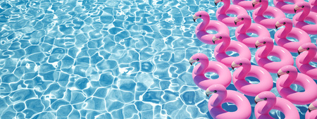 Photo for 3D rendering. a lot of flamingo floats in a pool - Royalty Free Image