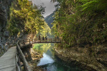 Photo pour gorge Vintgar, Triglav national park, Slovenia - image libre de droit