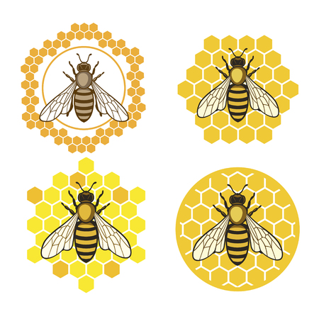 Illustration for Honey bee set. - Royalty Free Image