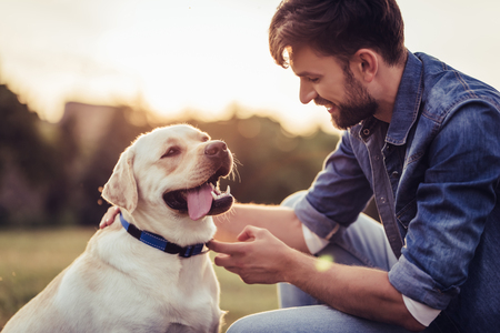 Photo for Handsome young man with labrador outdoors. Man on a green grass with dog labrador retriever. - Royalty Free Image