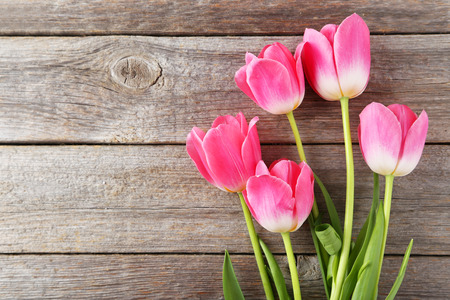 Foto de Pink tulips on grey wooden background - Imagen libre de derechos