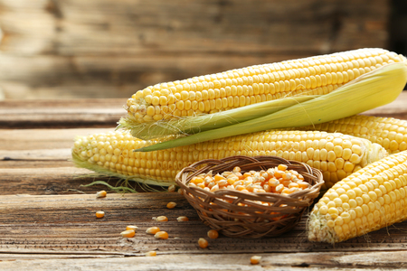 Foto de Corns on a brown wooden background - Imagen libre de derechos